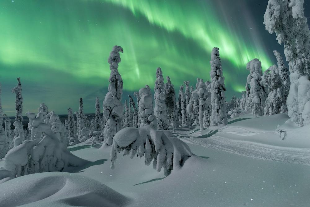 Saison der Nordlichter