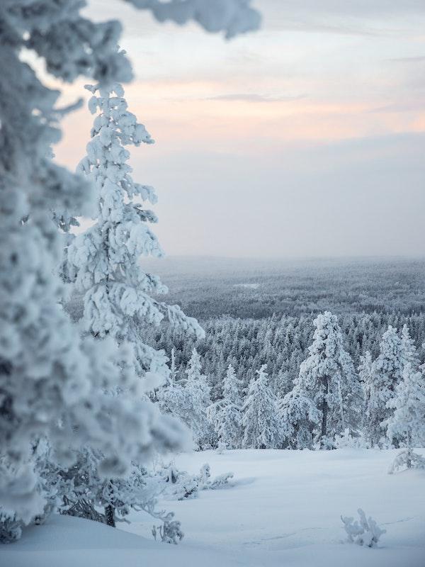 Finnland Winter © Unsplash